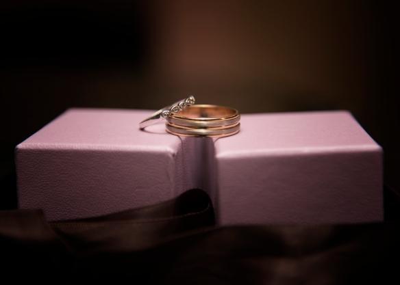 Morrison_Wedding-0150